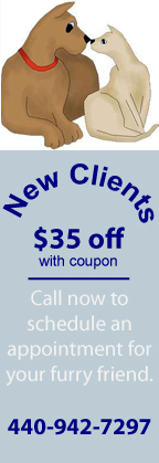 Meadowlands-Vet-New-Client-Offer.jpg